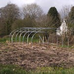 Our Poly tunnel